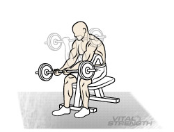 BEST BICEP WORKOUT: EXERCISE # 2